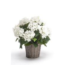 Hortensia wit in mand kunstplant