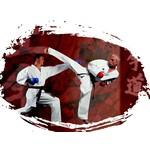 Sportprijzen karate