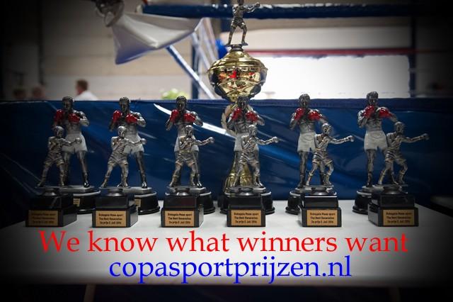 Sportprijzen boksen