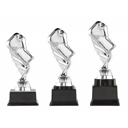Boks trofee zilver