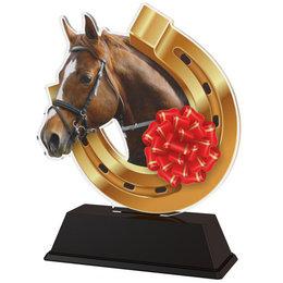 Paarden trofee  10 t/m 16.5cm