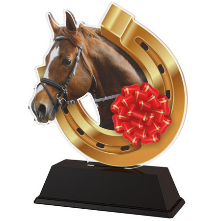 Trofee Paard Acryl Full-Color