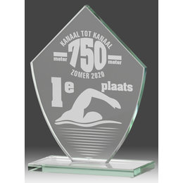 Glas trofee inclusief graveren