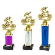 Trofee wielrennen 3 maten en kleuren