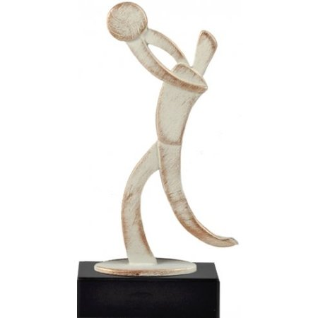 Metalen volleybal award