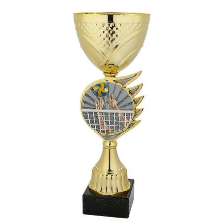 Bekers Volleybal goud
