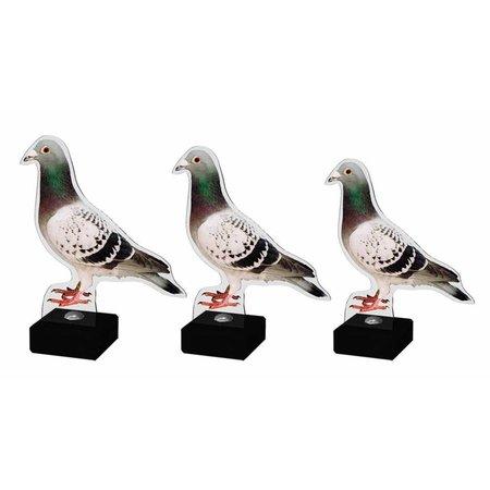 Acryl Duiven trofee full-colour