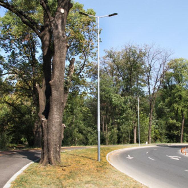 Lichtmast / Lantaarnpaal 9 meter - inclusief anker - 24 jaar garantie corrosievrij - met twee armen