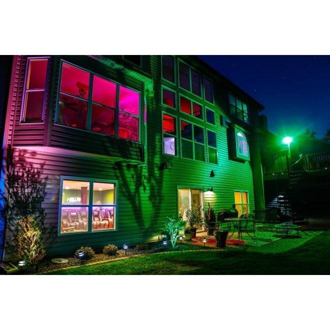 30W LED Beveiligingslamp Groen Licht