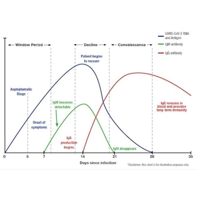 Corona sneltest (25 stuks) - Abbott COVID-19 antigen sneltest