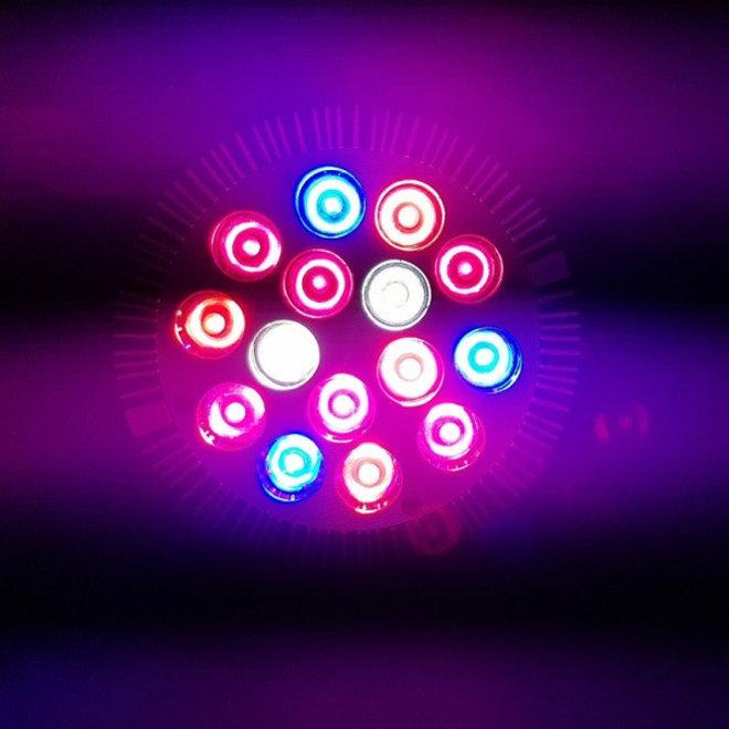 LED Groeilamp Kweeklamp E27 PAR S - 12 leds x 3W Voor Groei en Bloeifase