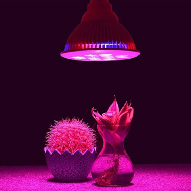 LED Groeilamp Kweeklamp E27 PAR M - 15 leds x 3W Voor Groei en Bloeifase