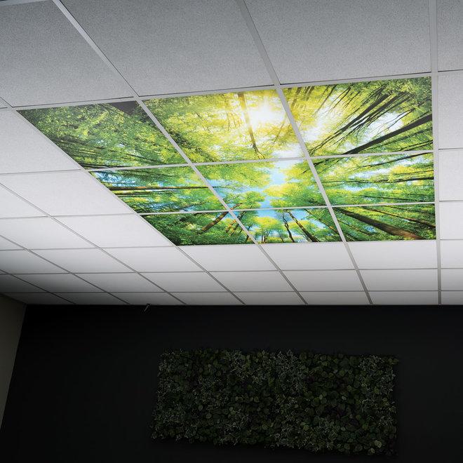 LED Wolkenplafond Acrylplaat 2mm - Inclusief LED Panelen en Afstandshouders - Set 4 Fotopanelen 2 x 2 Fotoplafond