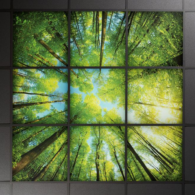 LED Wolkenplafond Acrylplaat 2mm - Inclusief LED Panelen en Afstandshouders - Set 6 Fotopanelen 3 x 2 Fotoplafond