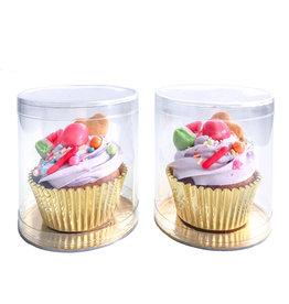 Cupcake dome