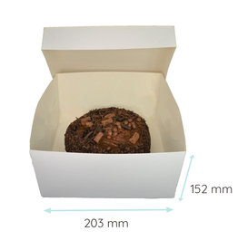 Folding 2 piece cakebox - 20x20x15 (50 pcs.)