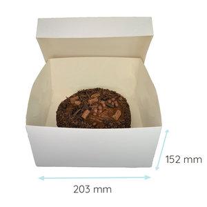 Folding 2 piece cakebox - 20x20x15 (50 pcs.)