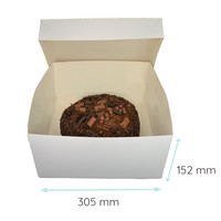 Folding 2 piece cakebox - 30x30x15 (50 pcs.)