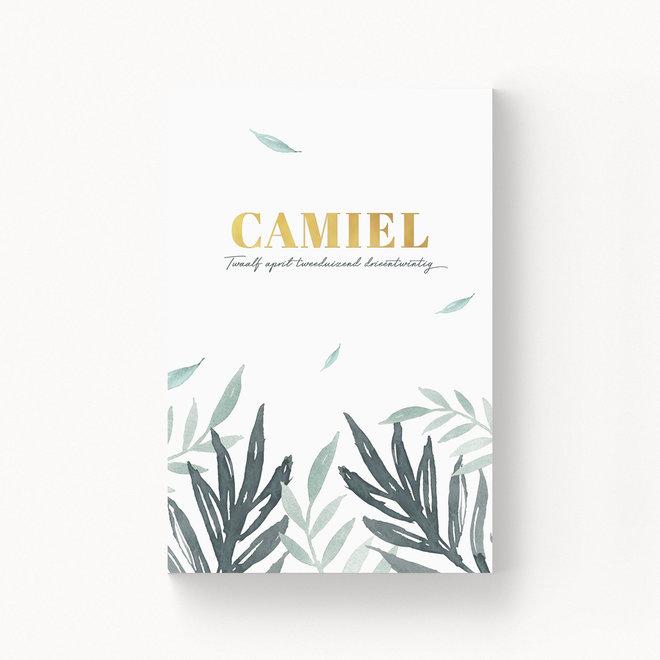 Geboortekaartje Camiel - met folie