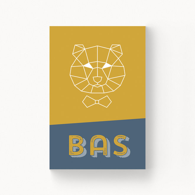 Geboortekaartje Bas