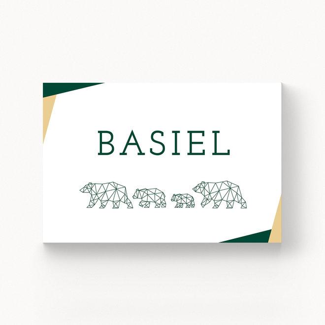 Geboortekaartje Basiel