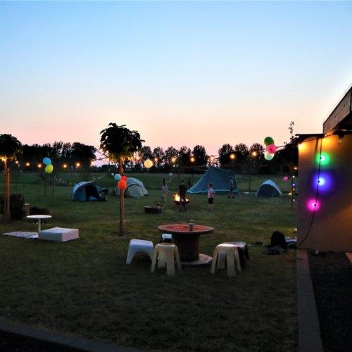 Lichterkette Glühbirne, LED 1 Watt, pink