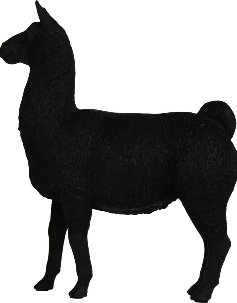 HOUSEVITAMIN Alpaca zwart