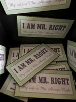 IB LAURSEN MAGNEET I am Mr. Right