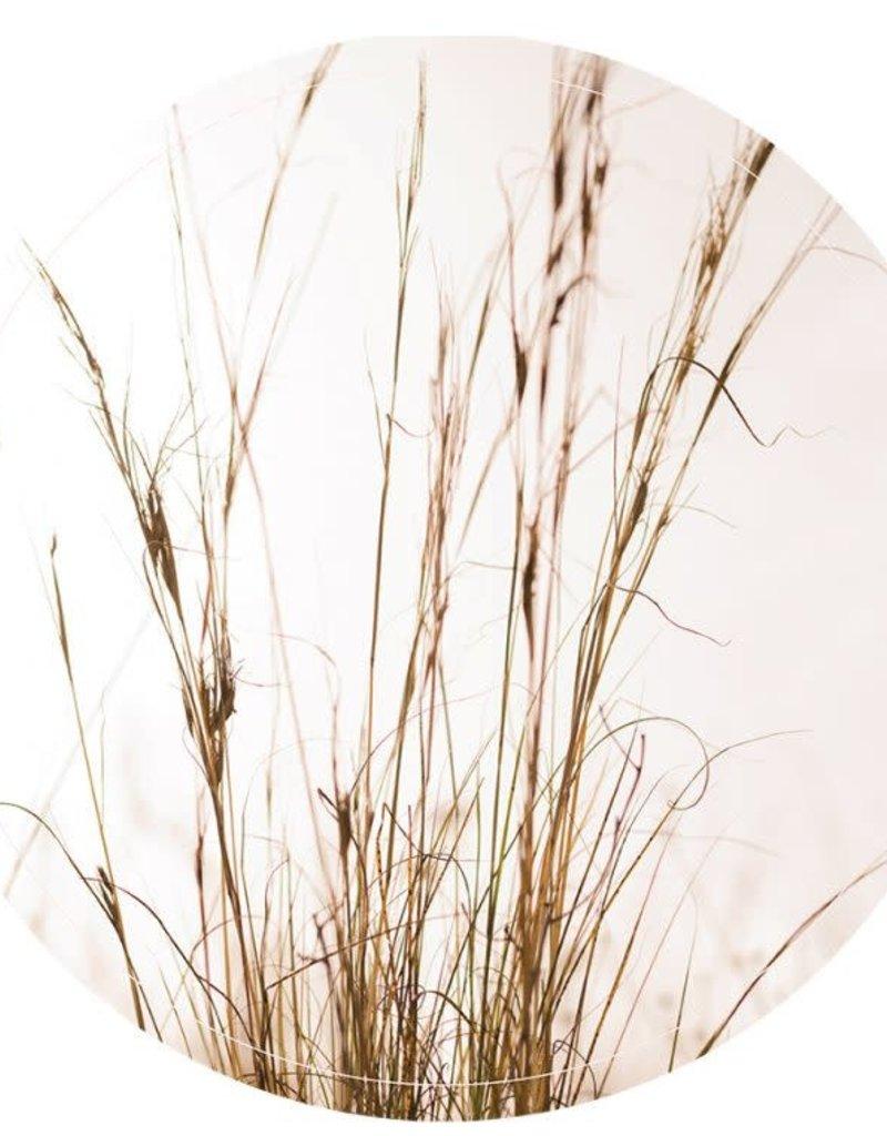 Muurcirkel Grass  40cm