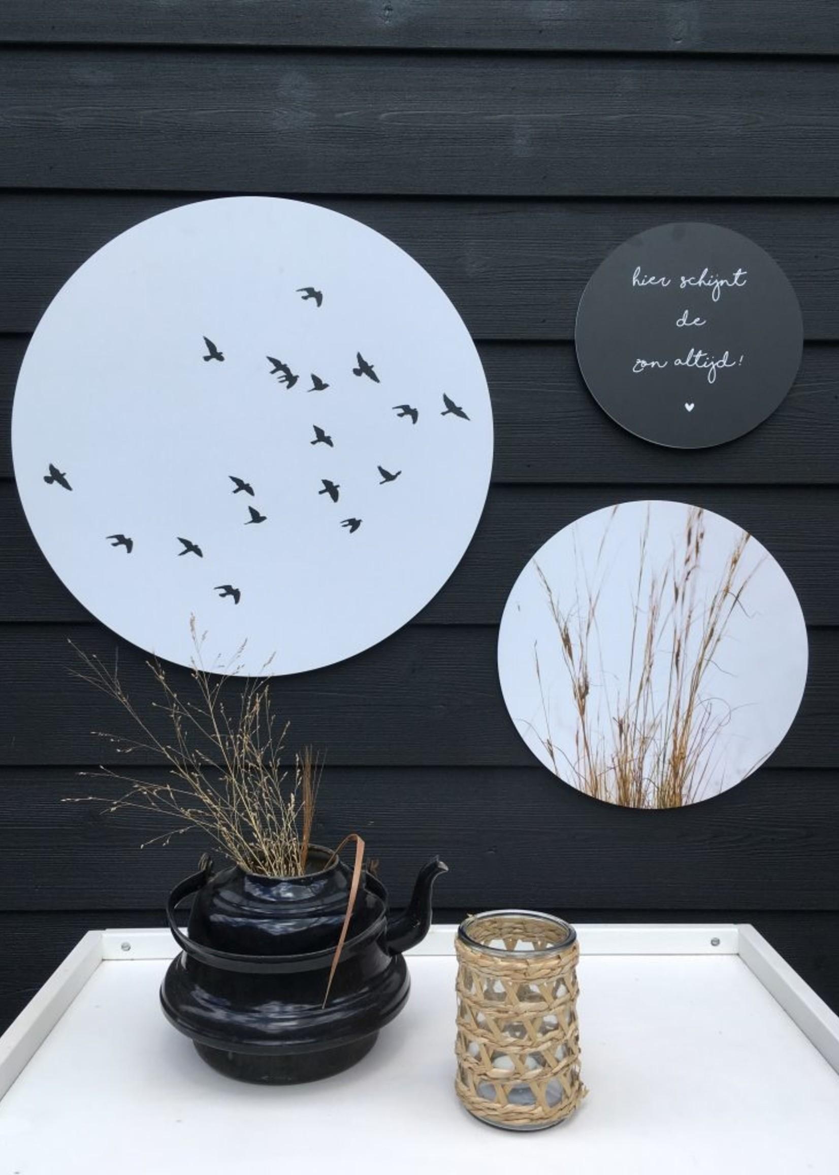 Muurcirkel Birds 40cm