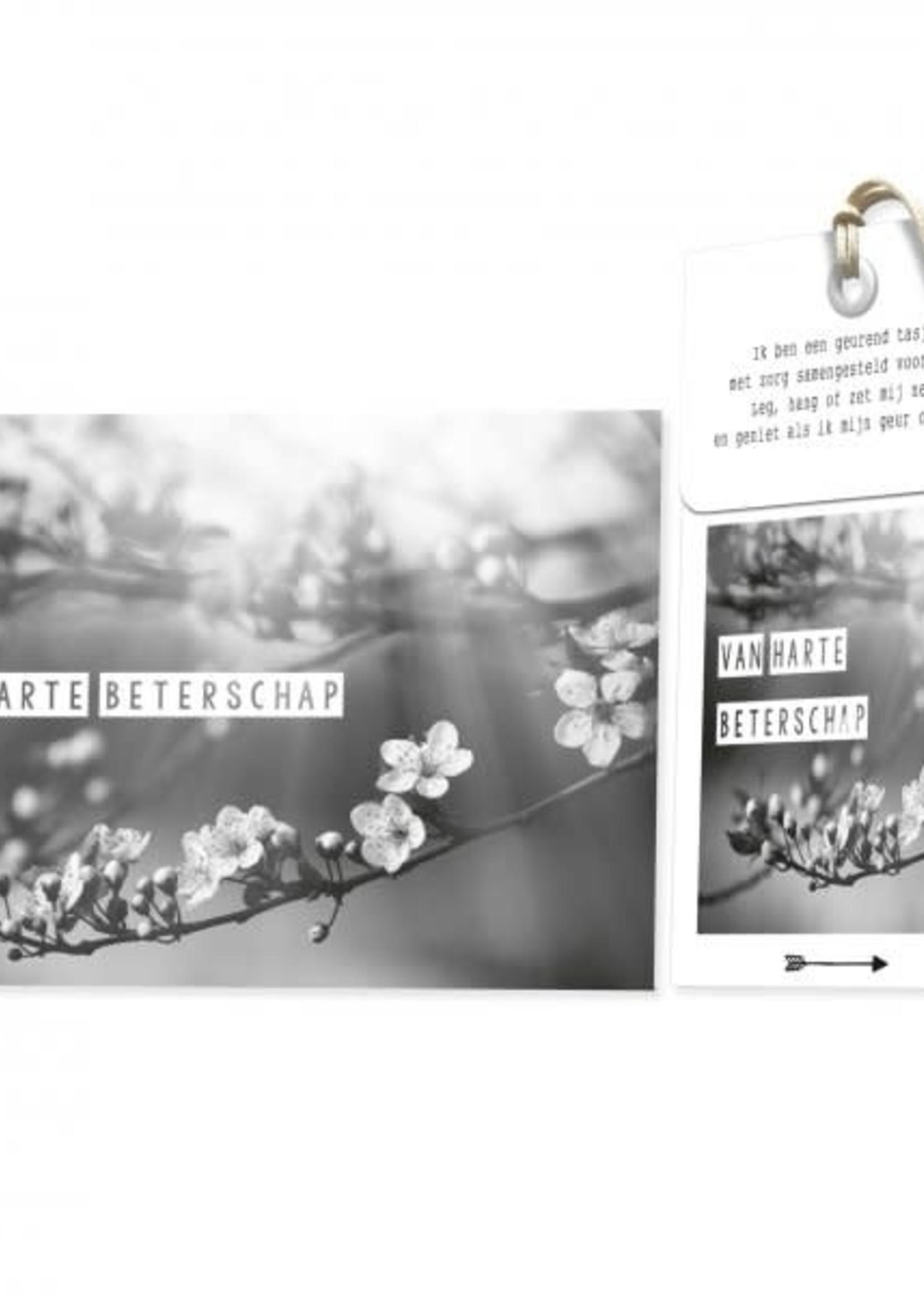 FLOWERCARDS Geurwenskaart  Van harte beterschap
