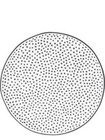 BASTION COLLECTIONS Ontbijtbord little dots in black 19cm