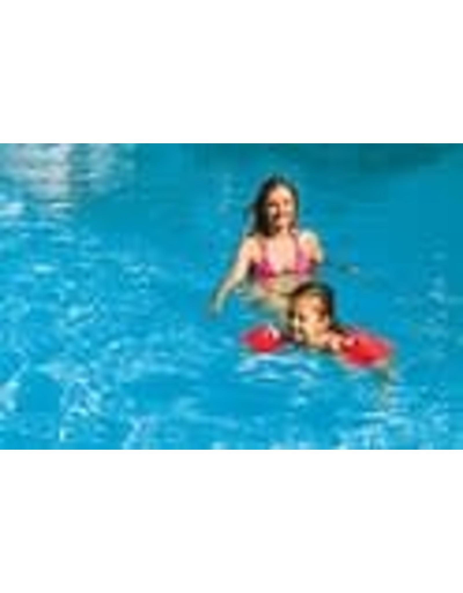 INTEX Intex Zwemvleugels Deluxe 18 tot 30 kg - Zwembandjes