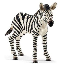 SCHLEICH Schleich Zebra jong 14811