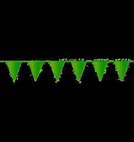 Haza Original vlaggenlijn lichtgroen 10 meter
