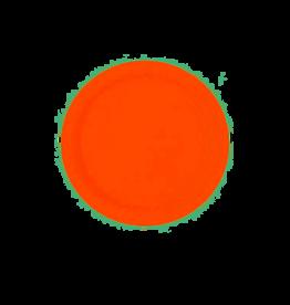 Feestborden/oranje borden 22,8 Cm 8 Stuks