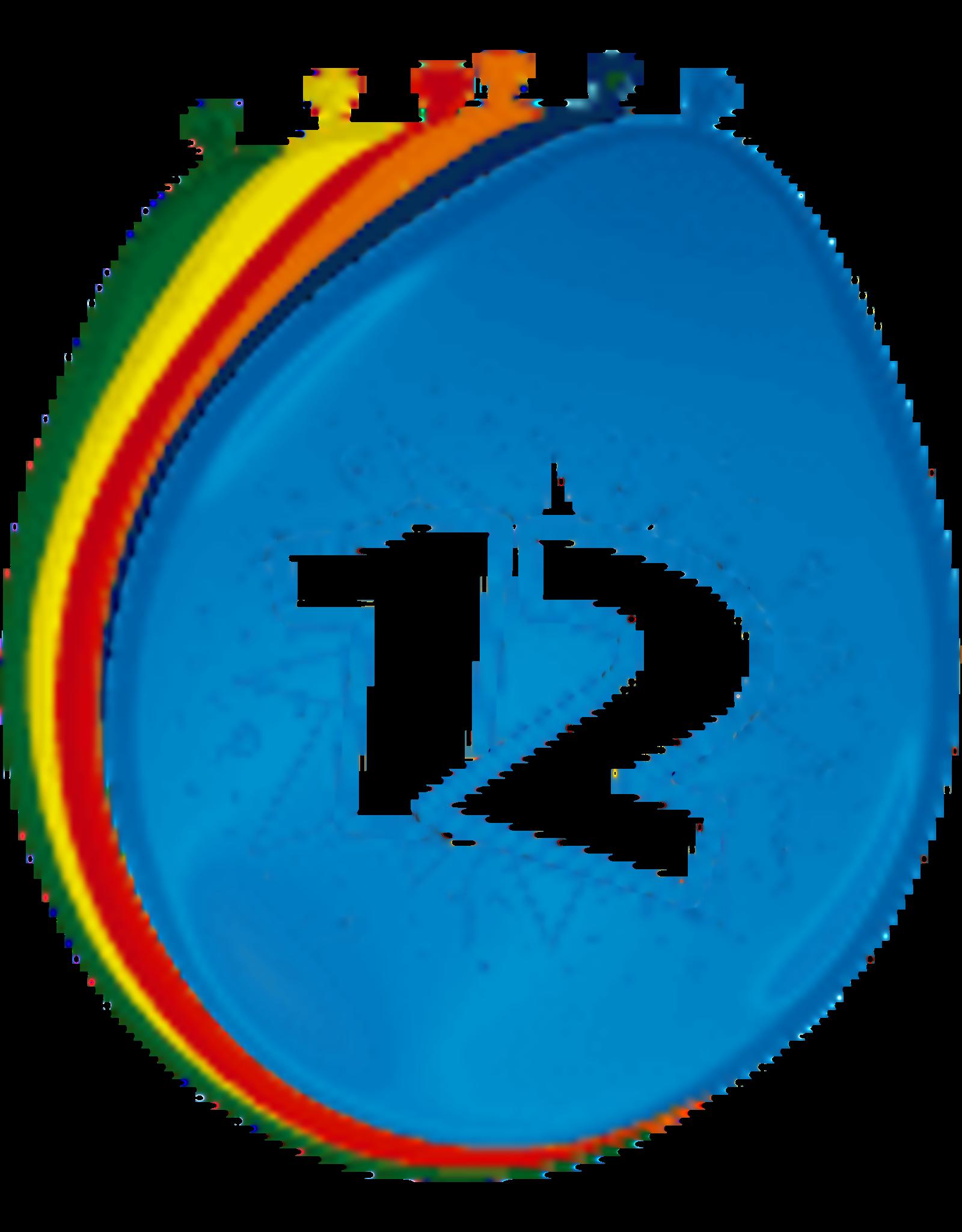 12 jaar ballonnen 8 stuks