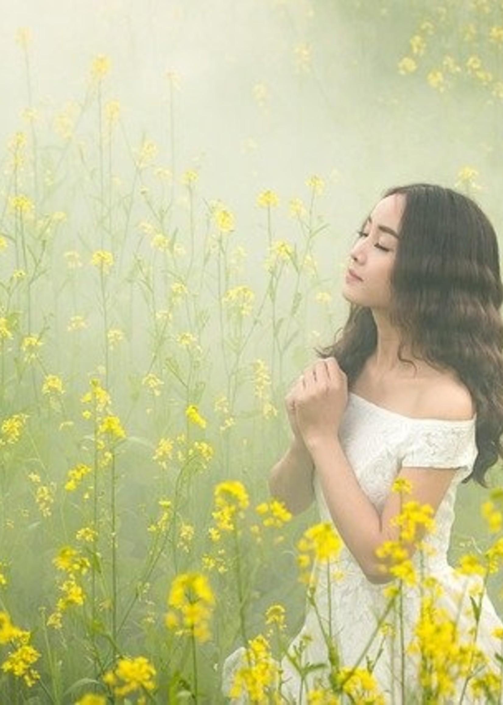 Smaranaa Seelengespräch Therapie