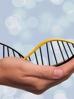 Smaranaa Akasha Göttliche DNA Neuaktivierung