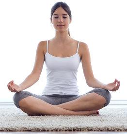 Einzelstunde online Yogakurs