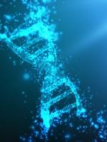 DNA Umstrukturierung und Verjüngung, Therapie-Sitzung