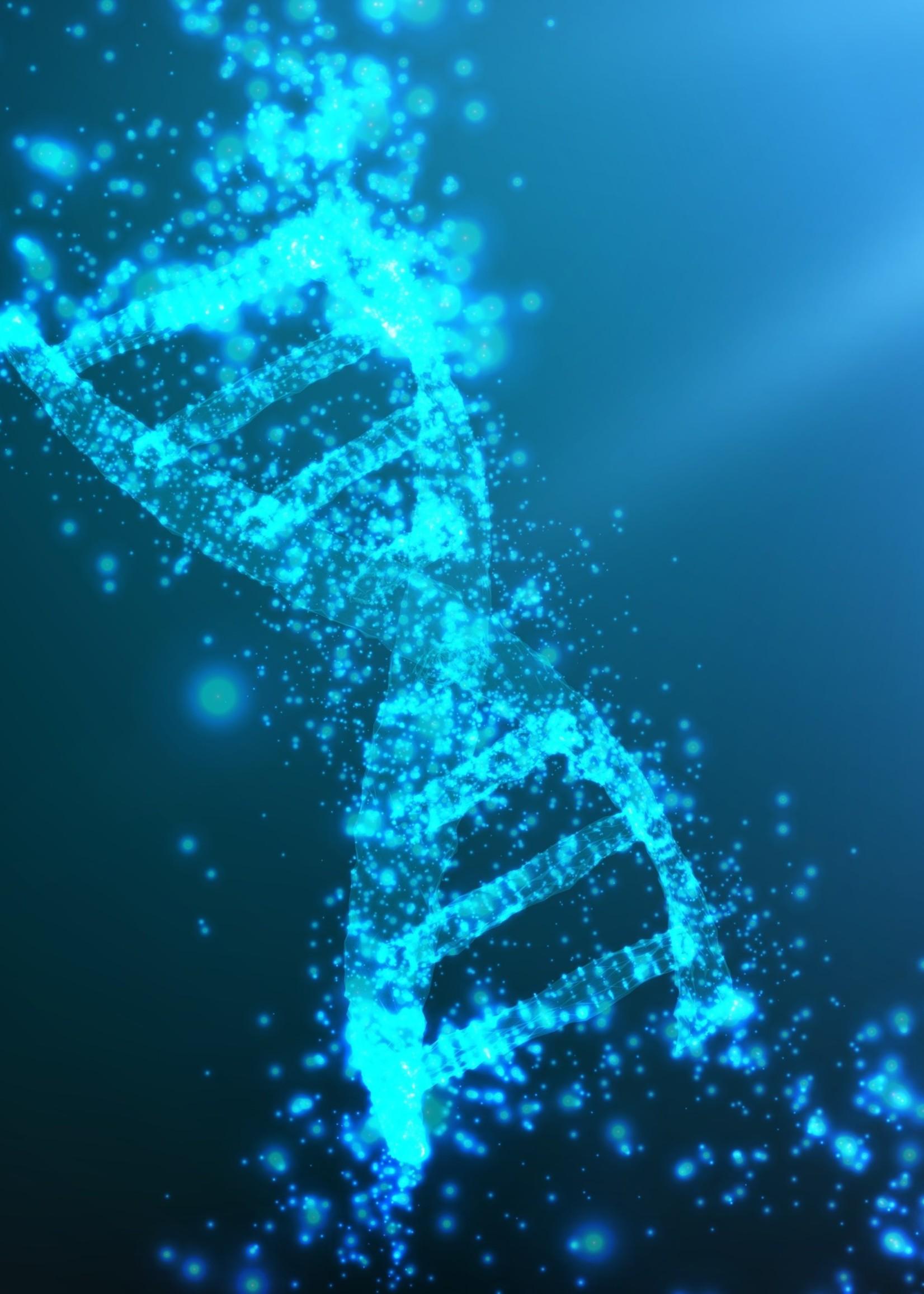 DNA Umstrukturierung und Verjüngung