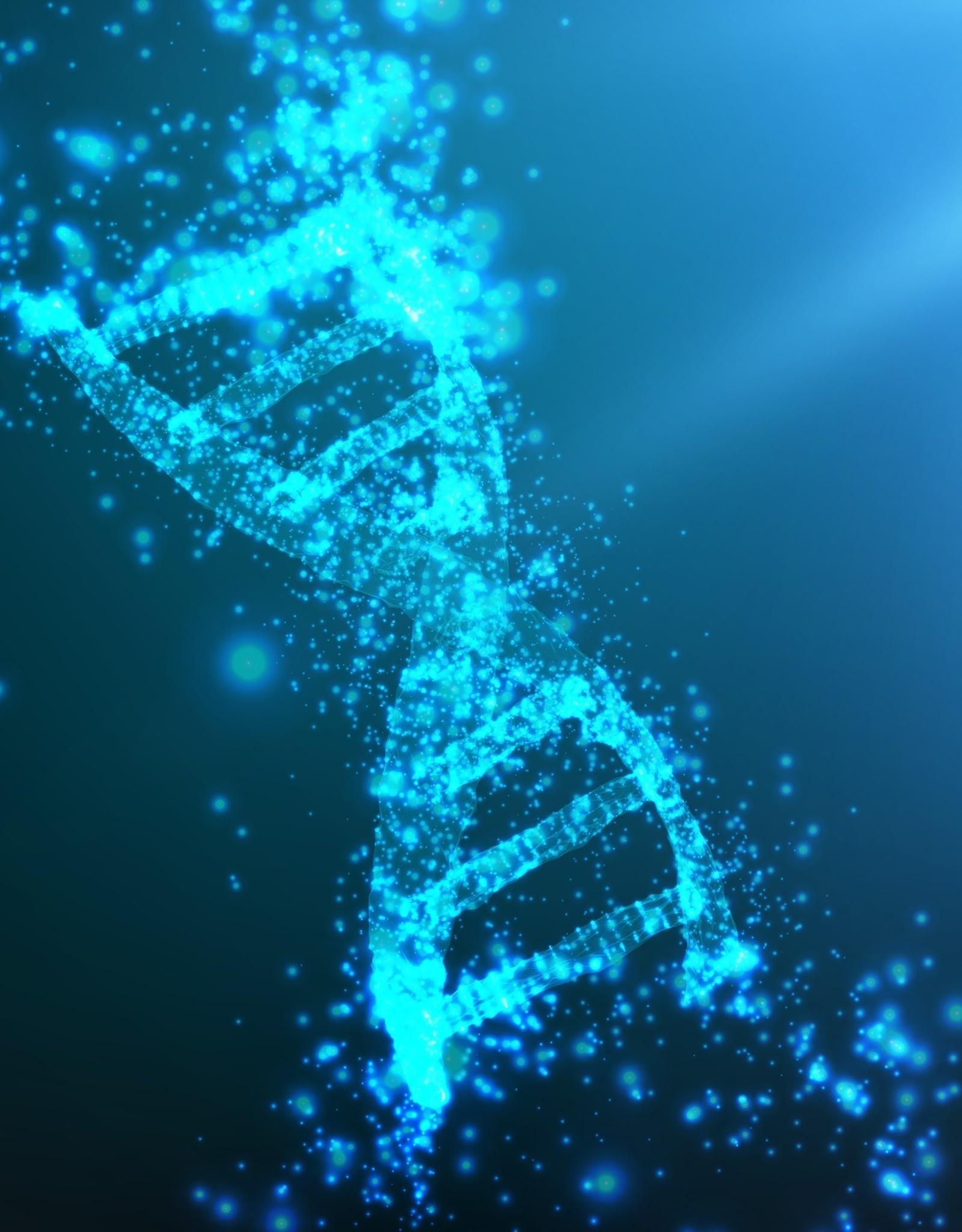 Aufgaben und Nutzen der DNA
