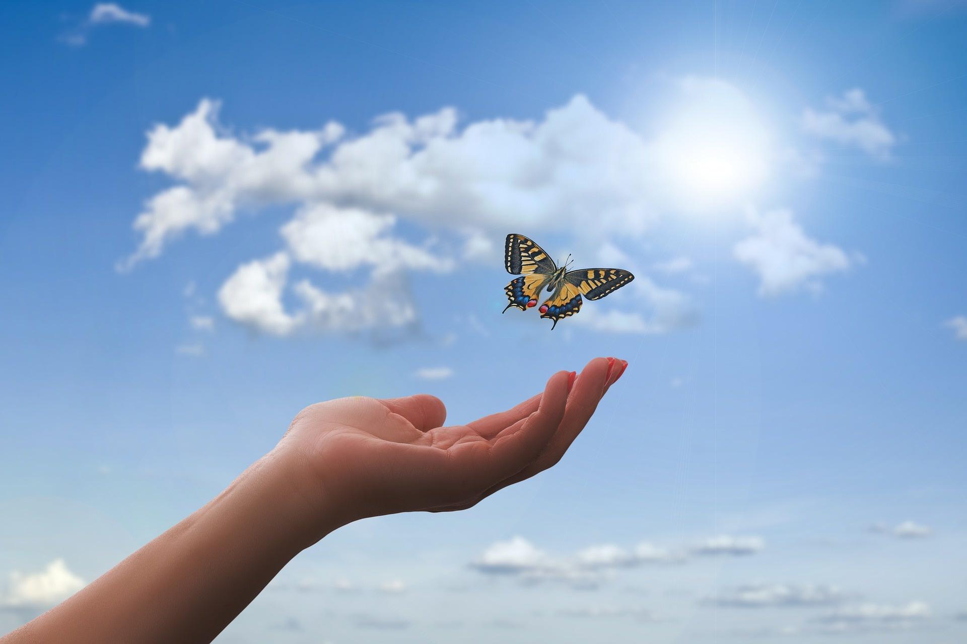 Tagesimpuls Mantra Dienstag, 8.06.2021 Portaltag Mut zur Wandlung