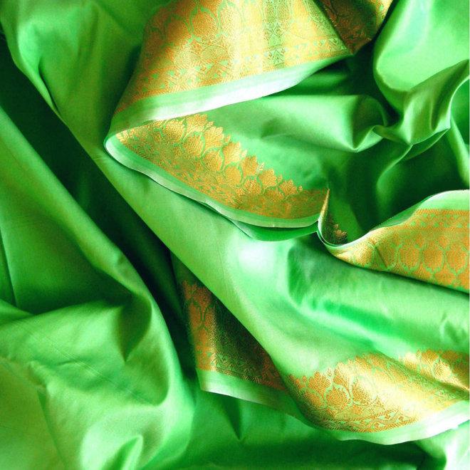Sari Seidentaft in Apfelgrün mit goldener Borte