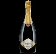 Aleksandrovic Trijumf Chardonnay Mousserend 2013