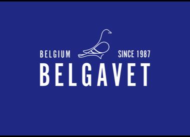 Belga vet