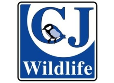 Wildbird