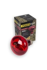 Broed accessoires Ir lamp rood powerheat - 150 Watt