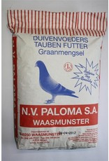 Paloma Kweek plata - 25 KG